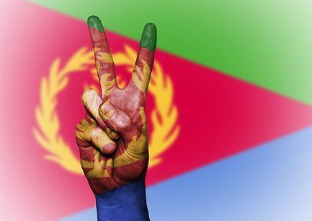 Veille  Il faut mettre fin à l'oppression des Erythréens