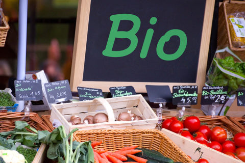 Veille  L'agriculture bio est en pleine croissance et grande pourvoyeuse d'emplois