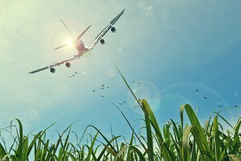 AVIATION : Evitons le crash climatique en interpellant maintenant les députés
