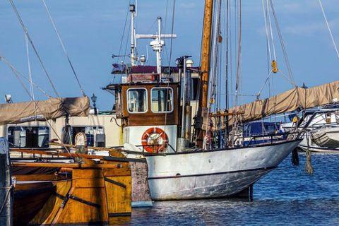Veille  Subventions à la pêche : cataclysme pour l'océan