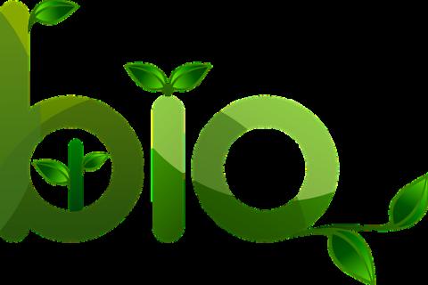 Étude sur l'impact des régimes alimentaires bio sur la santé et l'environnement