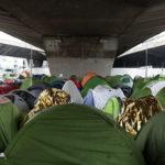 Veille  En finir avec les situations inhumaines d'errance et de campements en France