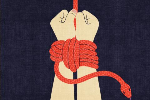 Veille  Torture: quel bilan en 2019?